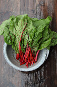 For the Love of Chard