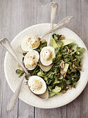 Eggs - for Dinner and Deco