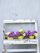 A Scent of Lilacs