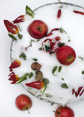 Red Christmas Apples