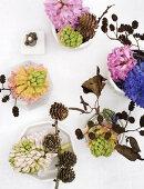 Winter Hyacinths