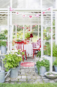 Greenhouse for Socializing
