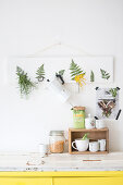 Nature Inspired DIY with Fern