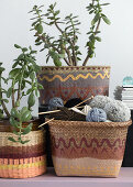 Baskets in your Home