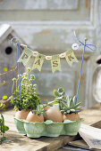 Easter Decorations - Pretty in Pastels