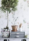 Paper & Plants
