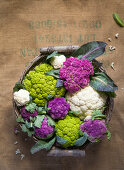 Cauliflower Rainbow