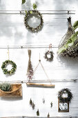 Dried plants deco ideas