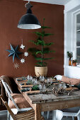 Stars - A Natural Christmas Decoration