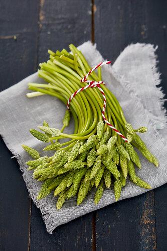 Garden Asparagus - 12470620