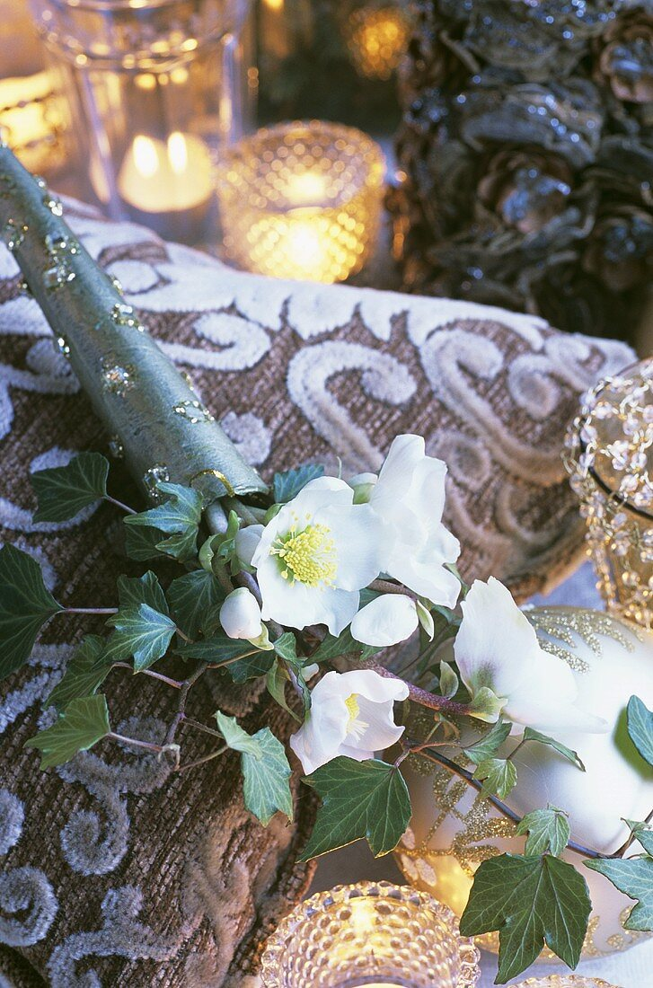 Christmas roses in decorative tube lying on a cushion