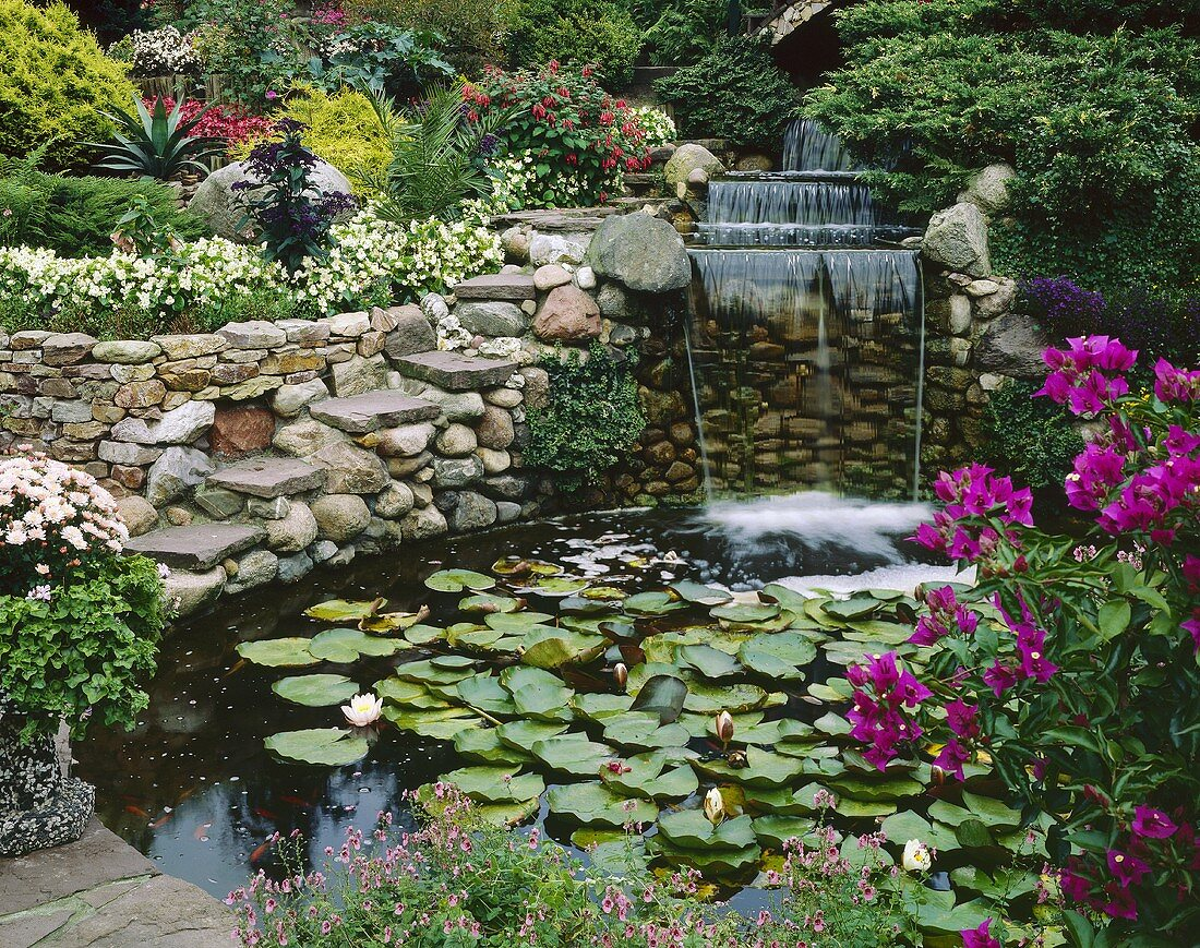 Garden with pond and waterfall
