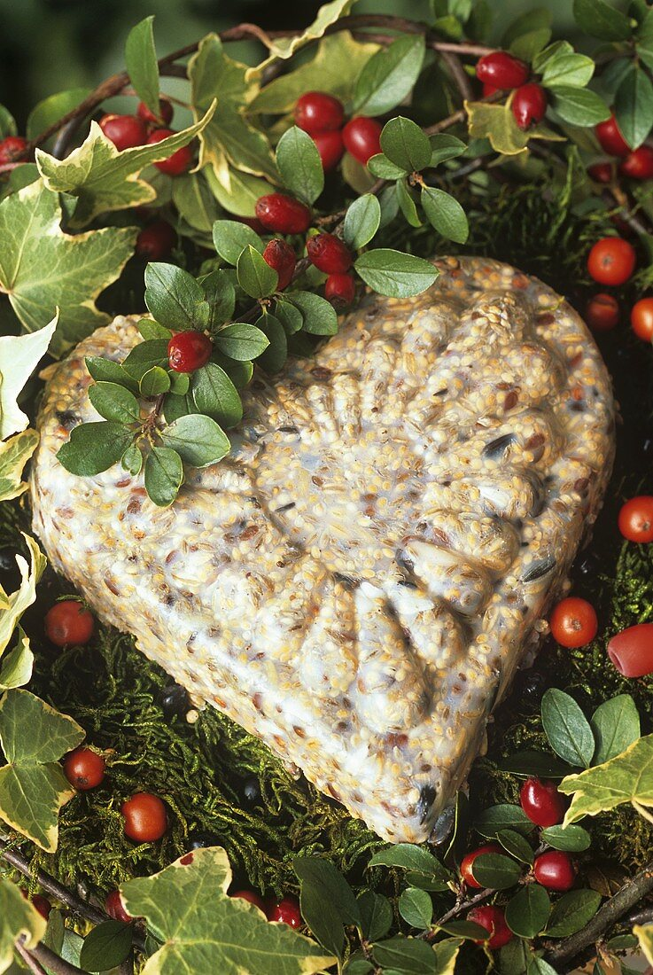 Bird food in the shape of a heart