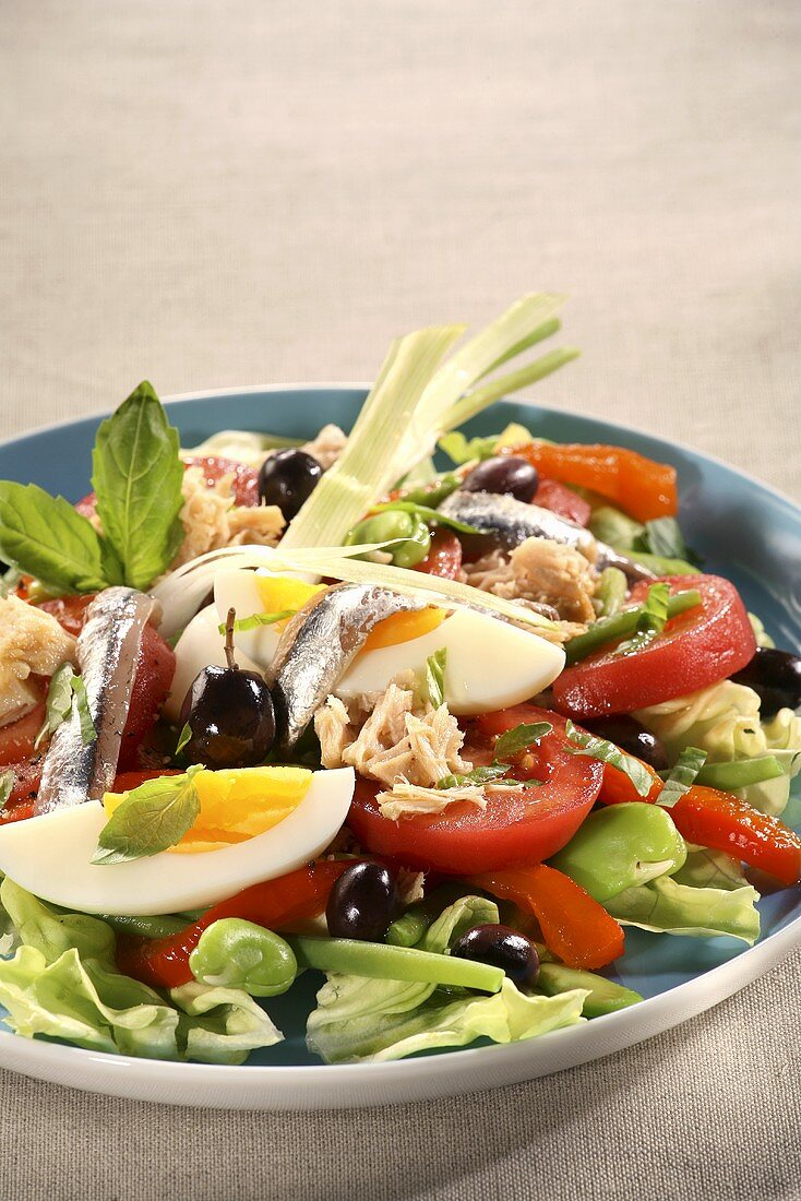 Salade niçoise (Speciality of Nice, France)
