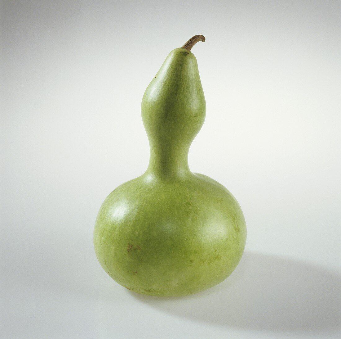 A green bottle gourd