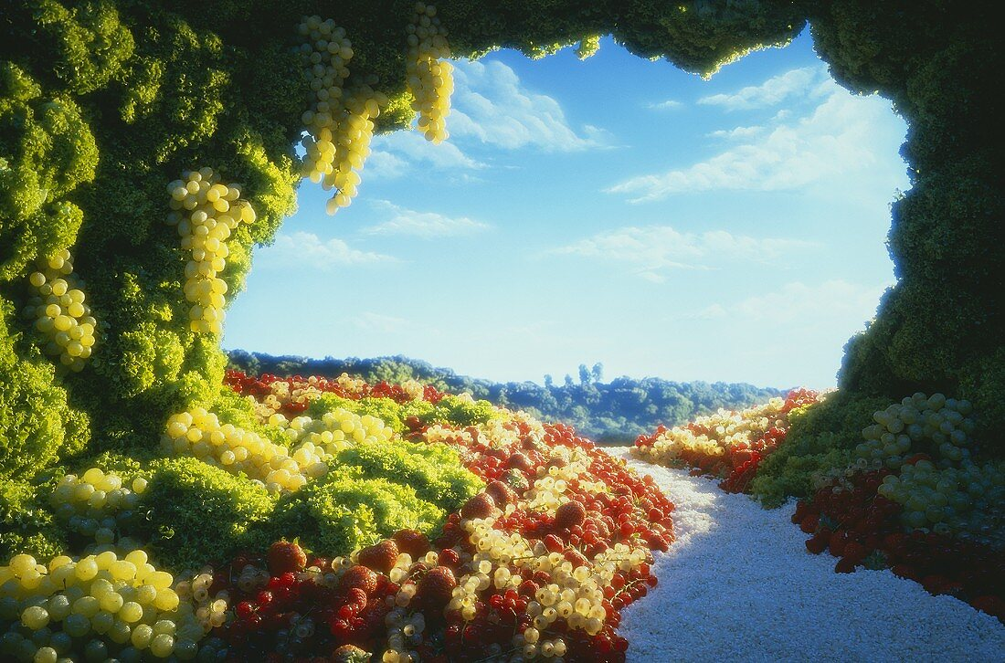 Food landscape made with berries, grapes and lettuce