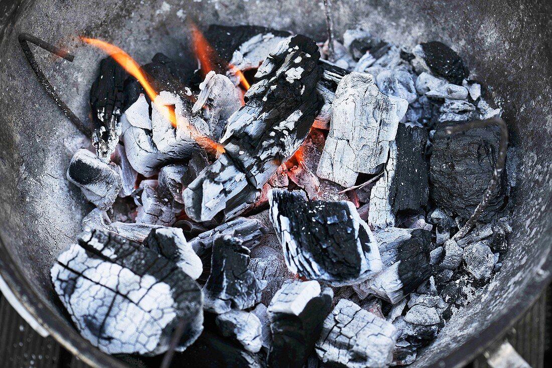 Glowing coals (close up)