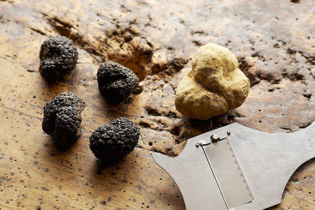One Alba truffle & four Périgord truffles with truffle slicer