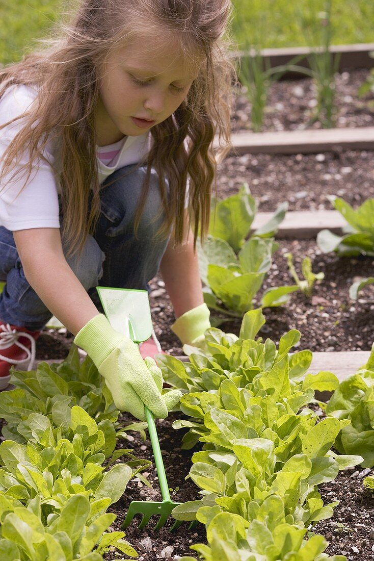 A little girl loosening the soil in a vegetable patch