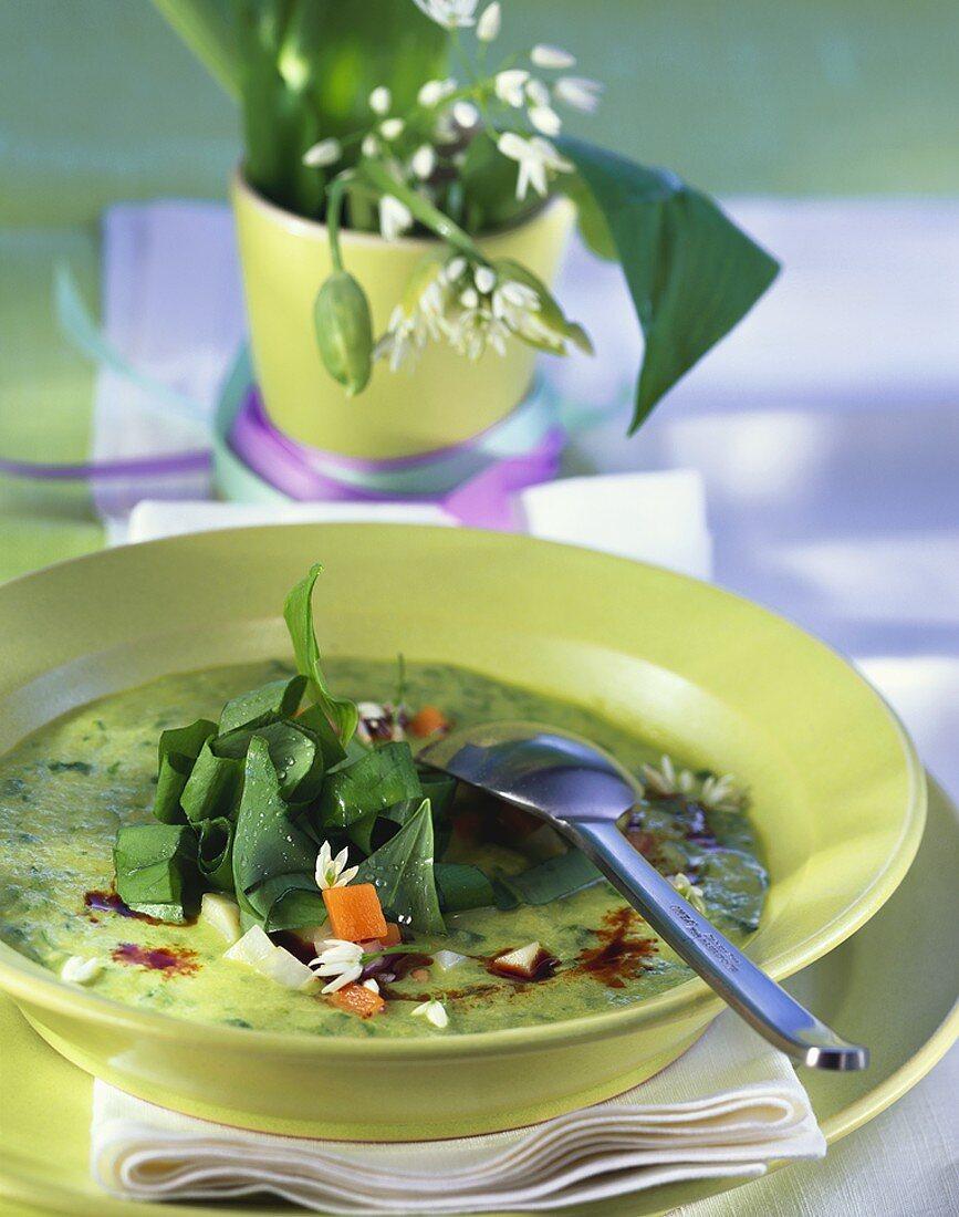 Vegetable cream soup with ramsons (wild garlic) & pumpkin seed oil