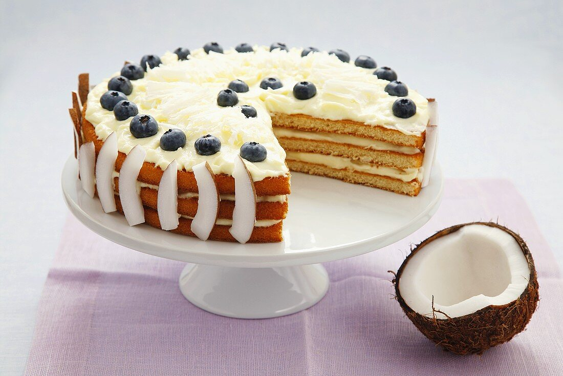 Coconut cake with blueberries