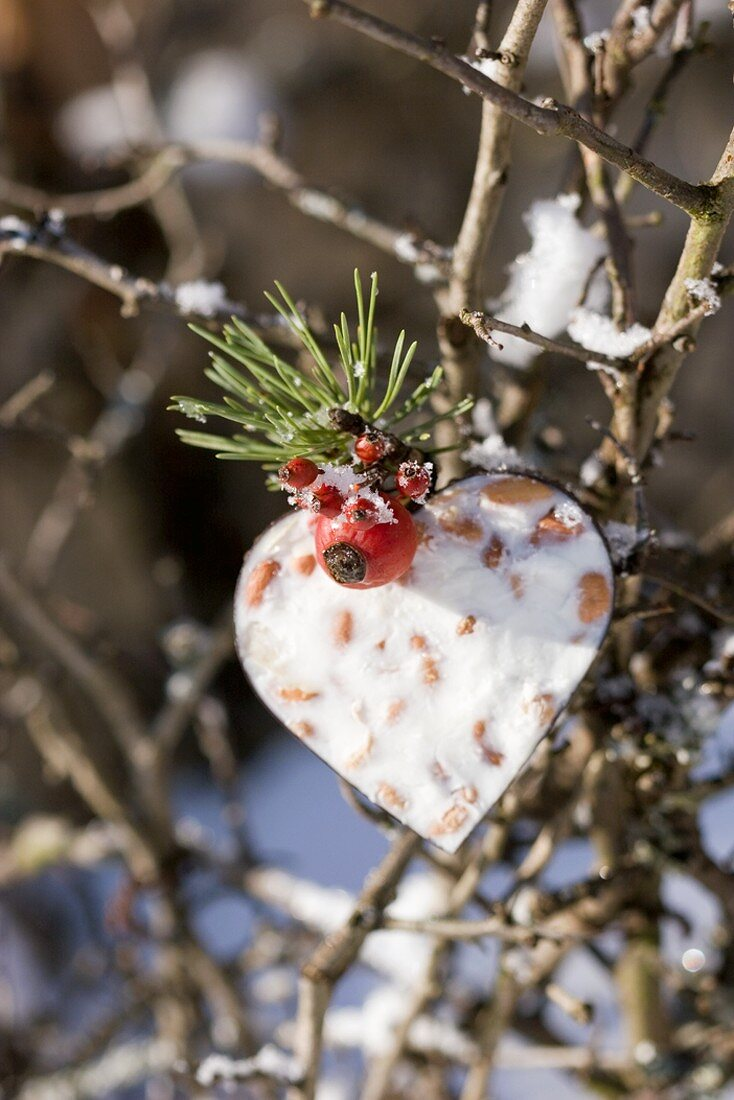 Bird food: heart shape filled with peanuts in palm fat