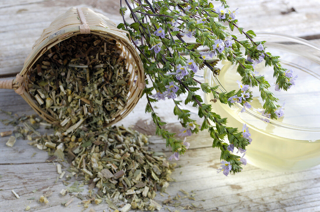 Eyebright: dried, fresh and tea