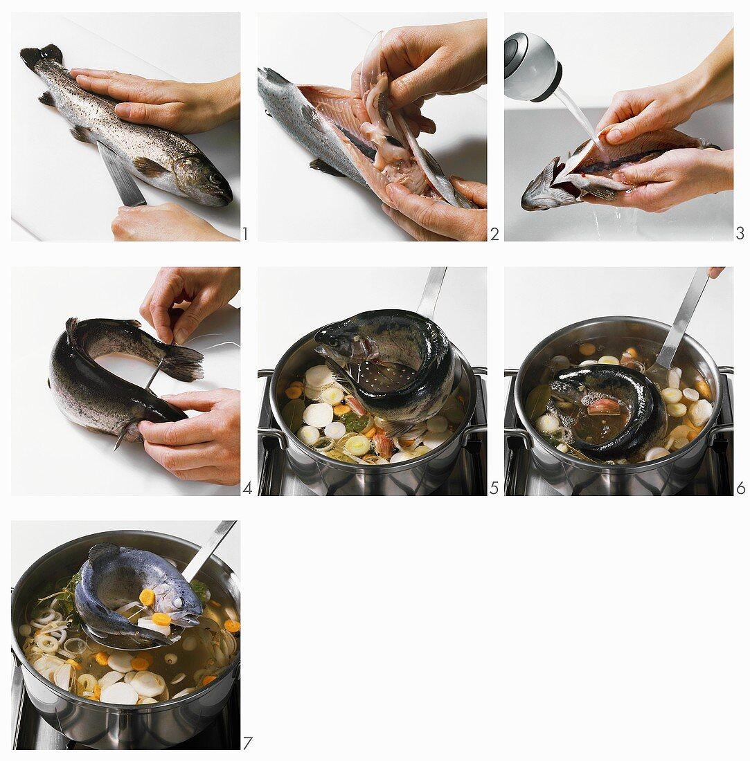 Cooking trout 'au bleu'