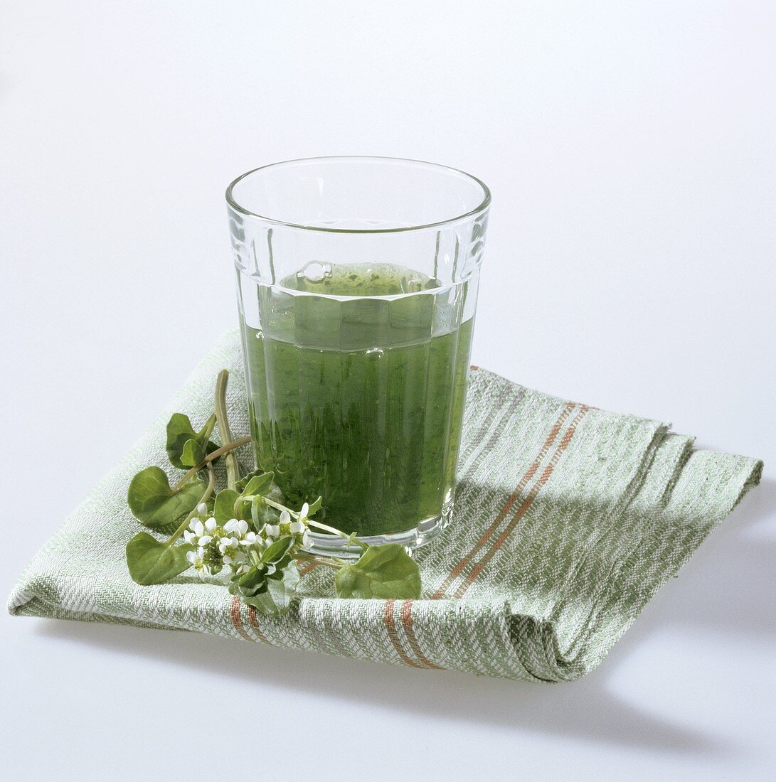 Drink made with common scurvy grass