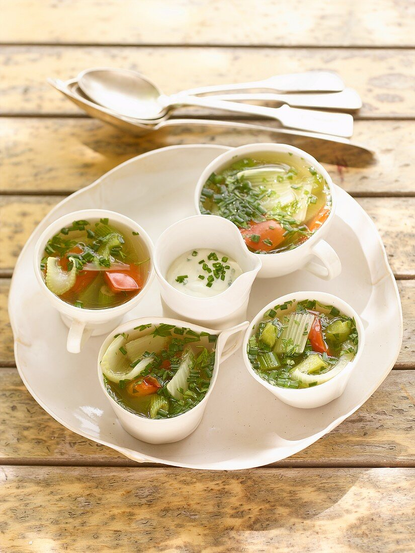 Fennel and peppers in aspic
