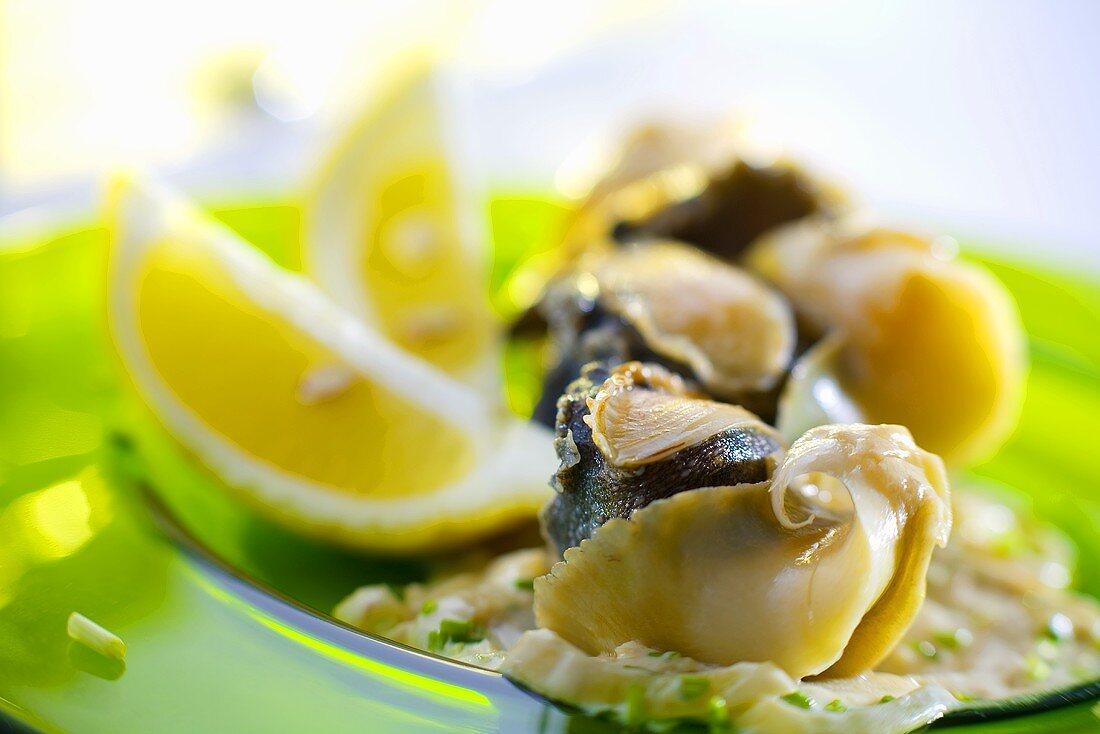 Cooked rapa snails (Ukraine)