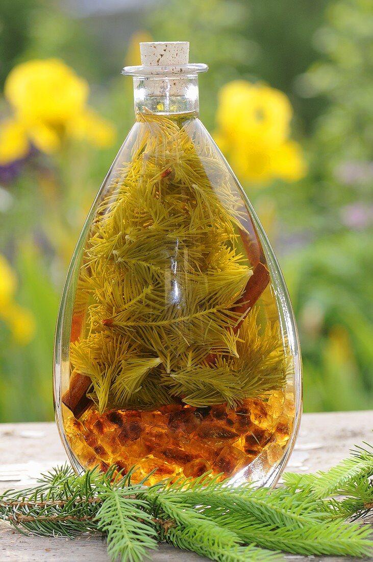 Spruce tip liqueur (Picea abies)