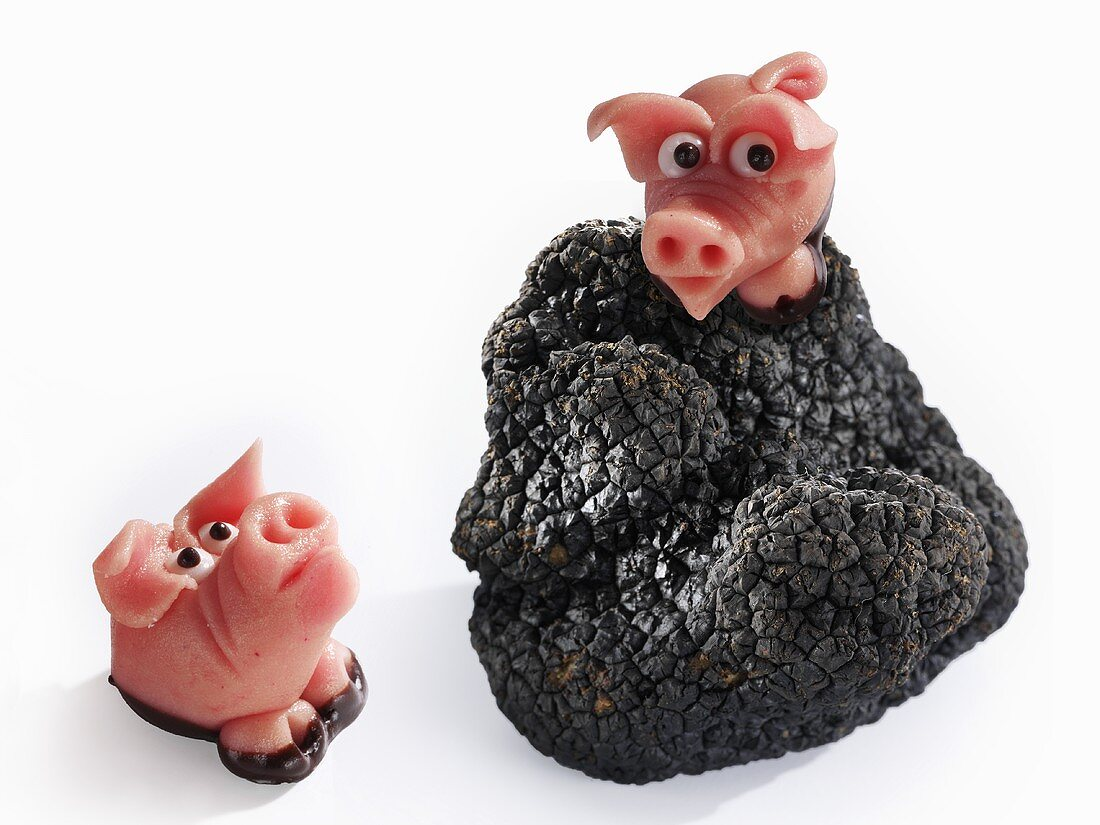 Marzipan pigs and black truffle (Truffle pigs)