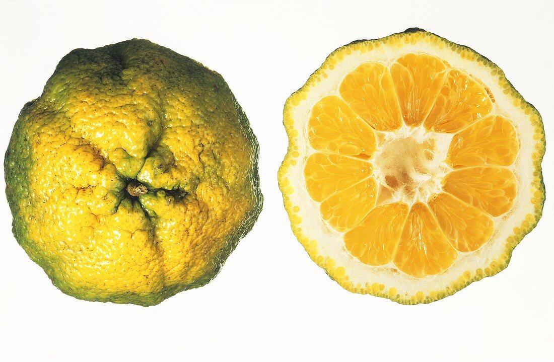 Ugli fruit, whole and halved