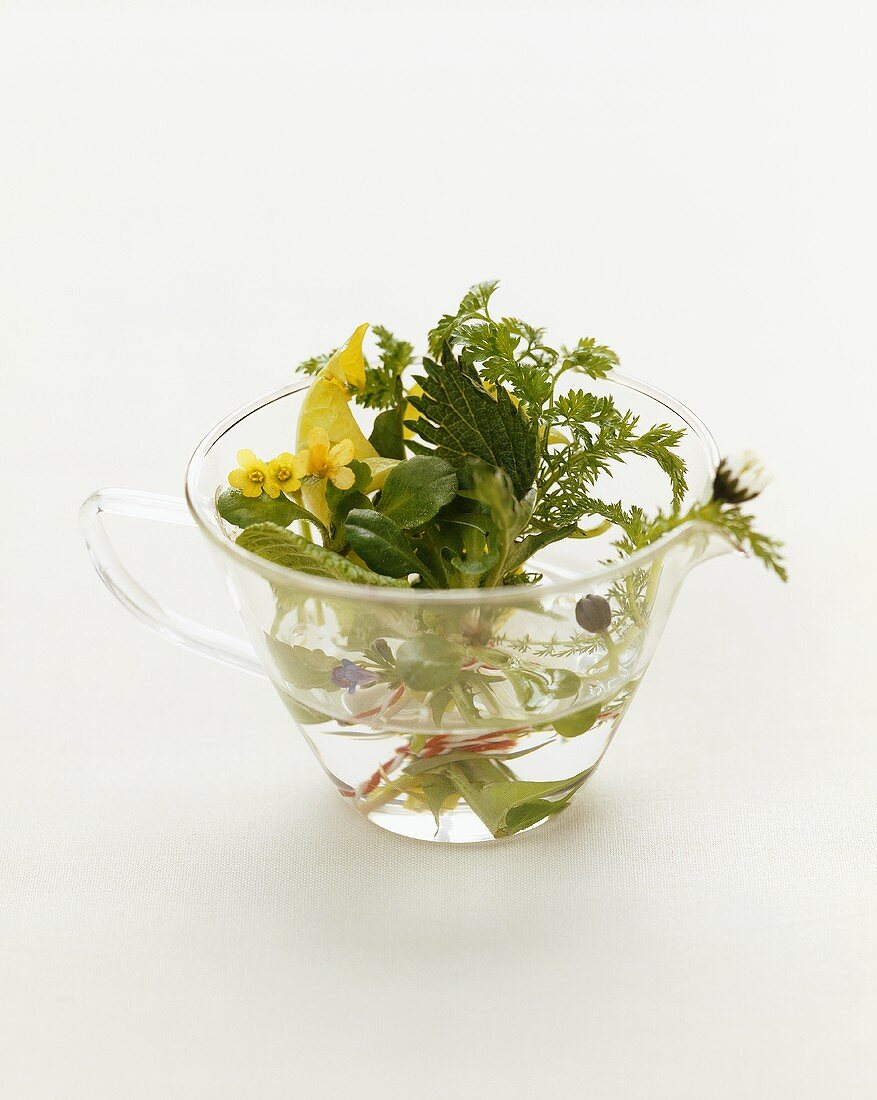 Posy of spring herbs