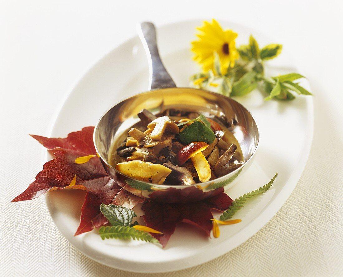 Ragout of mixed autumn mushrooms