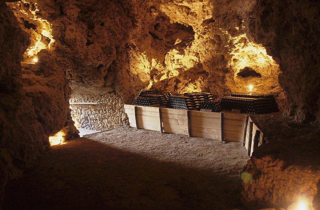 Wine cellar near Massa Marittima (Tuscany)