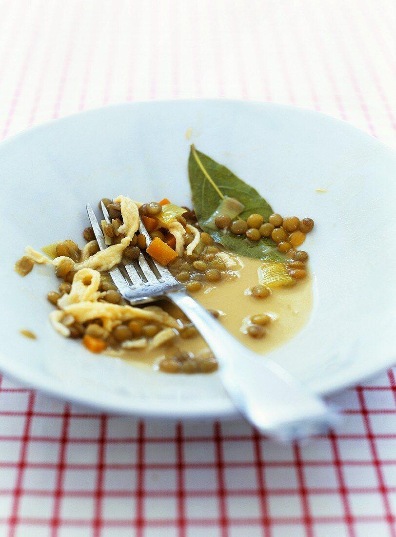 Lentils with spaetzle noodles (leavings)