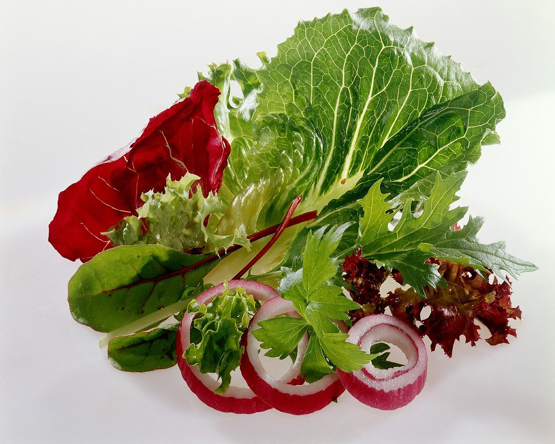 Various lettuce leaves and onion rings