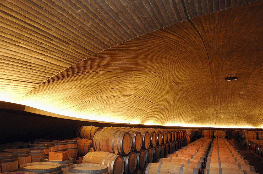 Barrique cellar, Bodegas Alvaro Palacios, Gratallops, Priorat, Spain