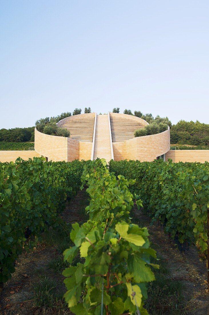 Petra Winery, Architect Mario Botta, San Lorenzo Alto, Suvereto, Italy