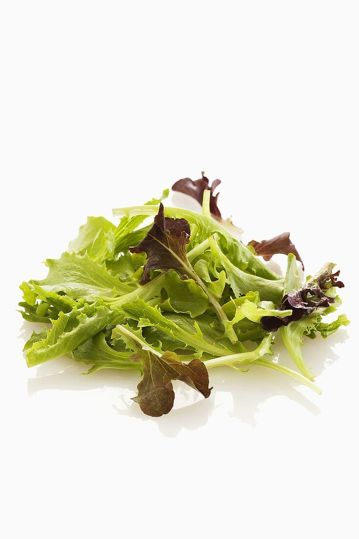 Young lettuce leaves