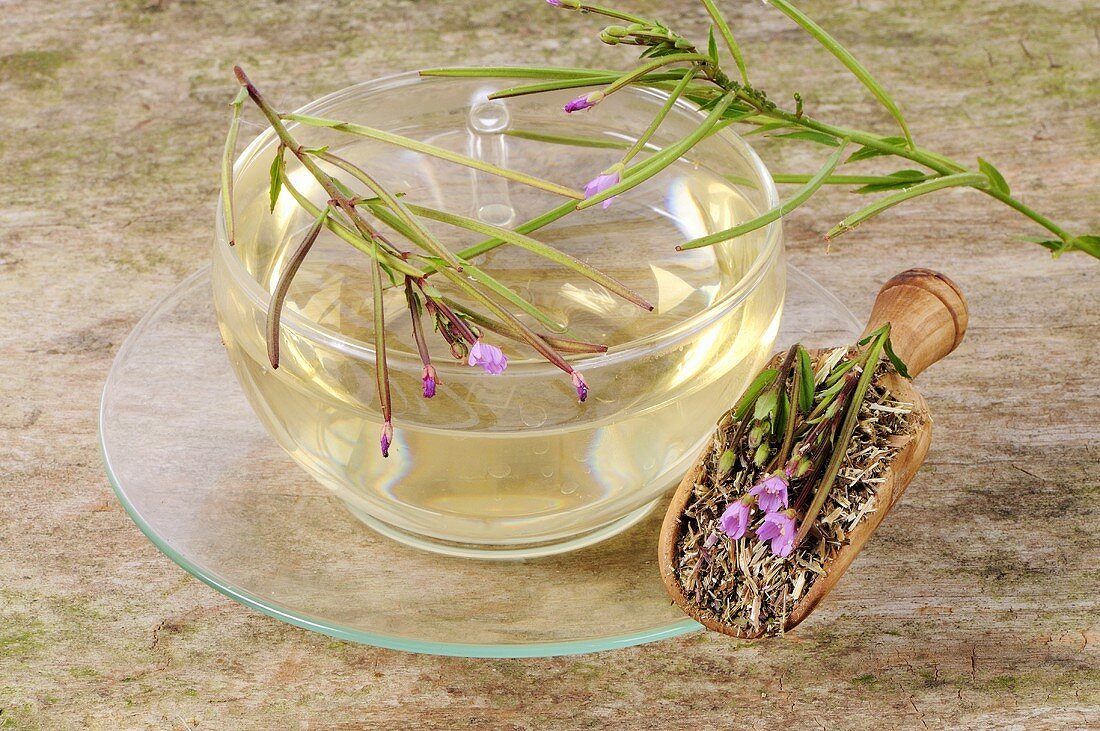 Small-flowered willow herb tea
