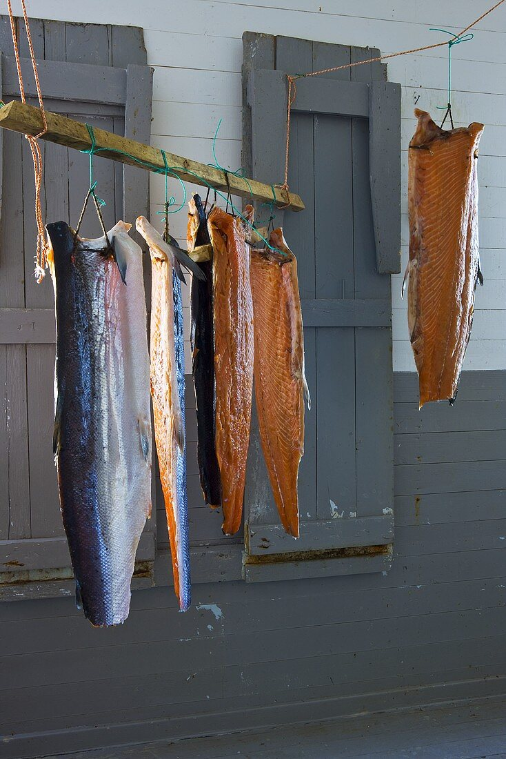 Sides of salmon hanging up to dry