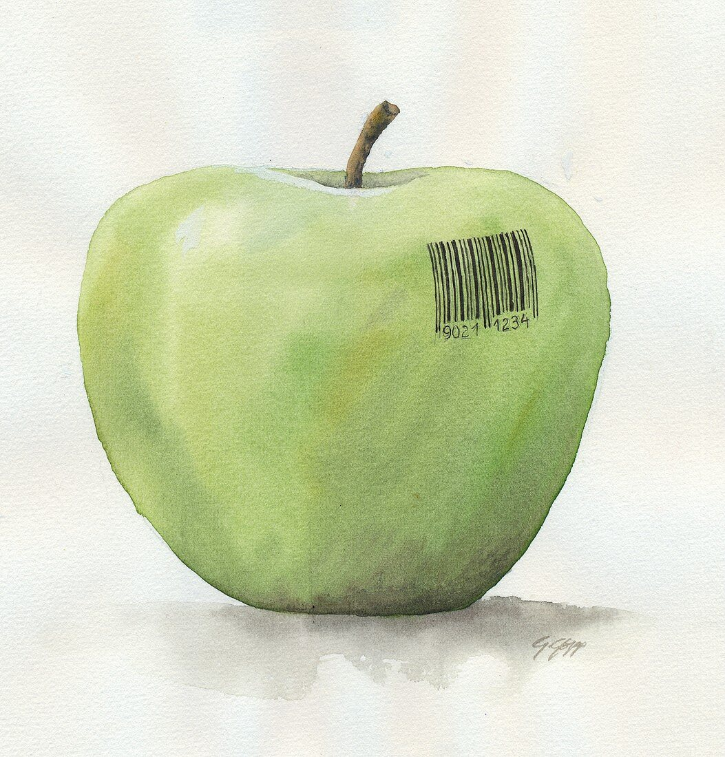 Apple with barcode (Illustration)