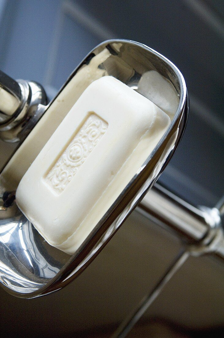 Soap in a soap dish