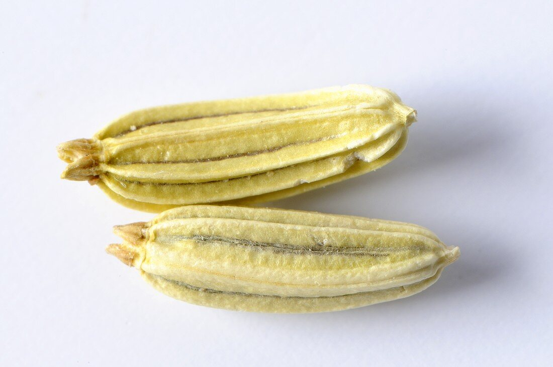 Fennel seeds (close-up)