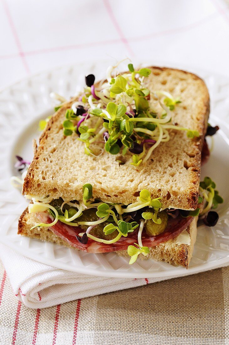 Sliced sausage, gherkin and radish sprout sandwich