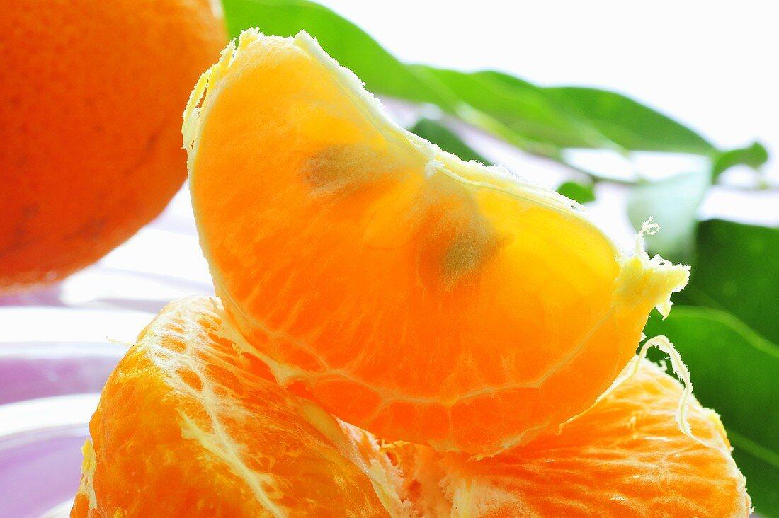 Mandarin orange segment (close-up)