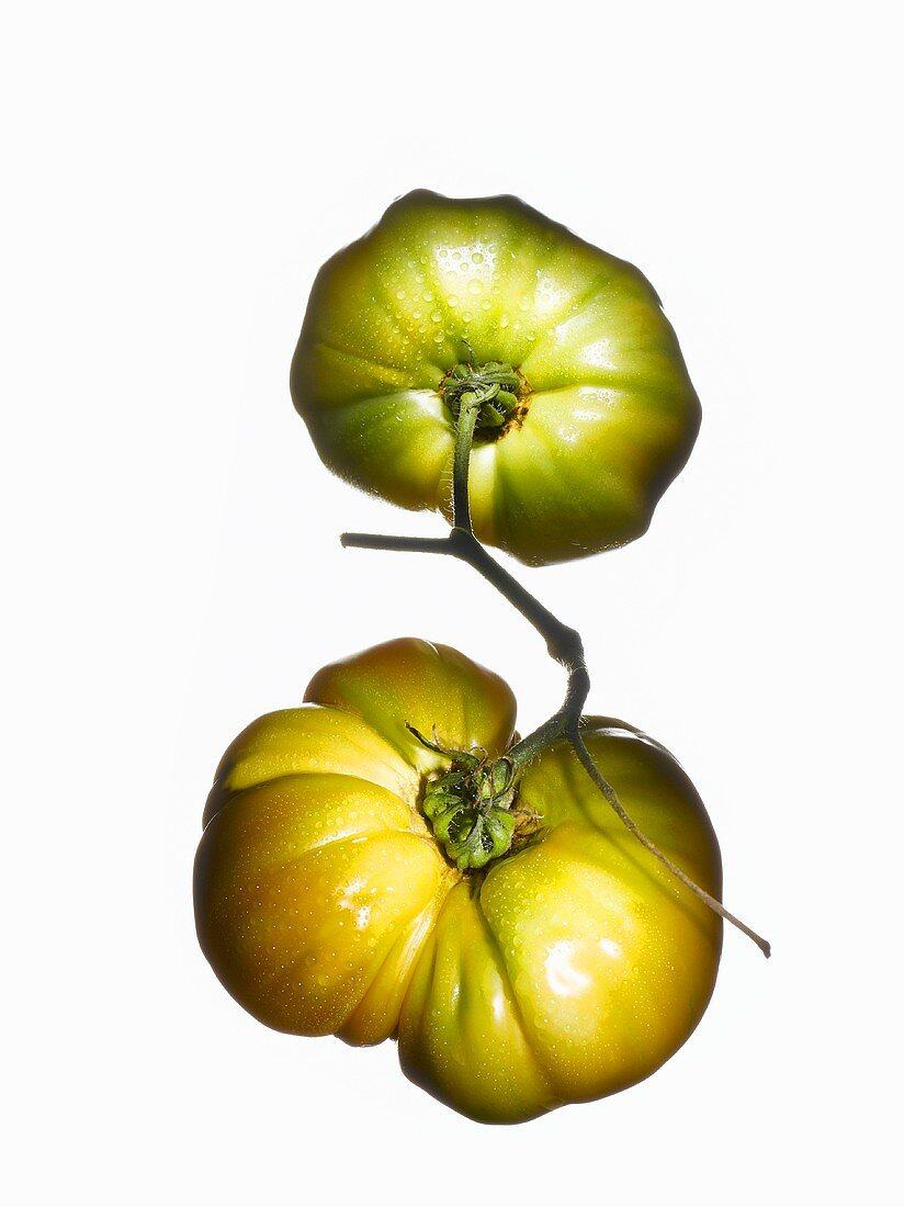 Two organic tomatoes (variety Pineapple Tomato)